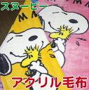 西川リビング スヌーピー毛布 (SNOOPY) アクリルニューマイヤー毛布 (ブランケット) アクリル毛布 シングルサイズ 140X200cm 日本製 【あす楽対応】