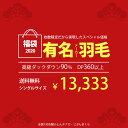 【福袋 2020】有名メーカー羽毛布団 シングル ダックダウ...
