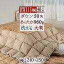 割引600円クーポン★12/17 11:59迄 西川リビング...