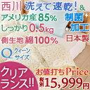【ポイント3倍 10/28 9:59迄】『東京西川×主婦がうれしい!』ダウン増量0.5kg!部屋干し対応商品。夏用 羽毛布団 羽毛肌掛け布団 クイーン 日本製 洗える アメリカ産ホワイトダウン85%