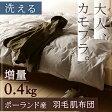 『かっこよさ×機能性』夏用 羽毛布団 シングル『増量0.4kg』ポーランド産ダウン85%!ロマンス小杉の羽毛肌布団 洗える!羽毛肌掛け布団 日本製