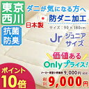 SSセール特別 ポイント10倍 6/21 8:59迄 西川産...