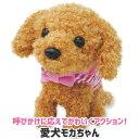 お得なクーポン配布中 よびかけアクション 愛犬モカちゃん ぬいぐるみ 犬 おもちゃ タッチセンサー かわいい おすすめ トイプードル