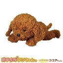 お得なクーポン配布中 おやすみワンちゃん トイプードルのココアちゃん ぬいぐるみ 犬 おもちゃ タッチセンサー かわいい おすすめ