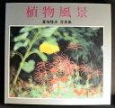 【中古】【グラフイック「 植物風景」】中古:ほぼ新品