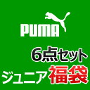 2015puma-boy