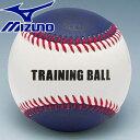 ミズノ 野球 ボール 硬式用 トレーニング スナップ用 1BJBH80200