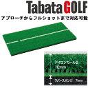 【あす楽対応】即納 Tabata タバタ ショットマット 286 GV-0286