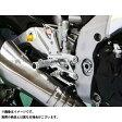 BABYFACE バックステップキット 仕様:レース カラー:シルバー RSV4/TUONO V4 APRC+ABS