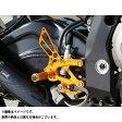 BABYFACE バックステップキット カラー:ゴールド S1000R