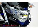 RIDEA MT-25/MT-03 16-用アルミヘッドライトカバー&アルミショートスクリーンセット カラー:チタン MT-25/MT-03