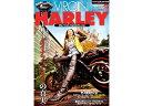 BikeBros.(雑誌) VIRGIN HARLEY vo...
