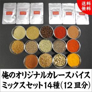 送料込1100円 俺のオリジナルカレースパイスミックスセット14種(12皿分)