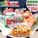 【出荷中】残暑見舞い ギフト 国産 おまかせ 野菜セット A...