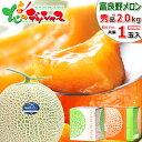 【順次出荷】お中元 ギフト 送料無料 富良野メロン 1玉 (共撰 秀品/1玉 2.0kg) 北海道
