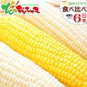 【出荷中】北海道 とうもろこし 食べ比べ(白色&黄色) 6本...