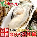 カキ 北海道産 殻付きカキ (1個 約110g~130g×20個/冷蔵品) 活 生 かき 牡蠣 殻付きかき 殻付き牡蠣 海鮮 海鮮セットグルメ 北海道 送料無料 お取り寄せ
