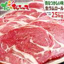 ラム肉 ジンギスカン ラムロール 2.5kg (ショルダー/スライス/500g×5袋/冷凍品) 自宅用 人気 ロール肉 ラムロール肉 ラムスライス じんぎすかん ラム 肉 羊肉 BBQ 焼肉 グルメ 北海道 お取り寄せ