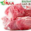 北海道応援 自宅でグルメ 食べて応援 ラム肉 ブロック 3kg (ショルダー/1kg×3P/冷凍品) 自宅用 人気 塊肉 ブロック肉 ラムブロック ラム 肉 羊肉 ジンギスカン BBQ 焼肉 グルメ 北海道 送料込み お取り寄せ