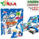 【北海道お土産】北海道限定 白いブラックサンダー ミニサイズ...