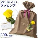 父の日 ギフト ラッピング 黄色いバラ付き プレゼント 包装 father's day gift wrapping