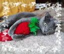 猫キック炸裂♪【キックキャロット】1本(猫用おもちゃ)05P19Dec15
