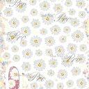 Sha-Nail More (写ネイルMORE/写ネイルモア) ネイルシール Daisy/デイジー (Paint/ペイント) 【フラワー】【花】【ネコポスOK】