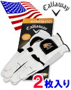 【あす楽対応】 月間奉仕品 【US直行便】 2010 キャロウェイ WARBIRD(ウォーバード) ゴルフグローブ ◆2枚組◆ <合成皮革>