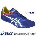 Ttp524