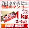 【1Kg】特別栽培・沖縄産完熟アップルマンゴー大玉2玉入り(アーウィン種)