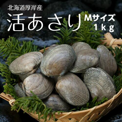 手掘り 北海道厚岸産島あさり Mサイズの商品画像