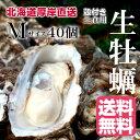 【マルえもん Mサイズ40個】北海道厚岸産本養殖牡蠣生食用