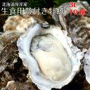 【マルえもん 3Lサイズ10個】北海道厚岸産本養殖牡蠣生食用