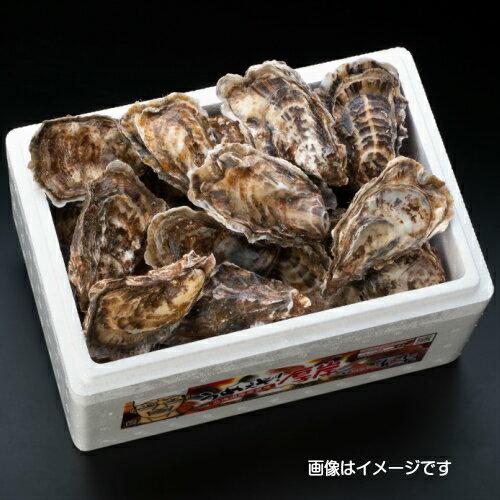 【マルえもん Lサイズ30個】北海道厚岸産本養...の紹介画像3