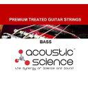Acoustic Science/エレキベース5弦 Nickel/Steel【アコースティックサイエンス】【メール便発送代引き不可】