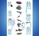 熱帯魚図鑑バーチャル・アクアリウムDVD