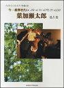 楽譜 今一番弾きたい葉加瀬太郎(バイオリンソロ/ピアノ伴奏付) 【10P03Dec16】