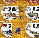魚魚あわせ(ととあわせ)英語版 card game Sushi Bar