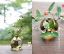 月窓 結婚祝いにぴったりのガラス製の花器・花瓶・フラワーベースの通販・販売