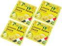 KALDI カルディ 塩レモンパスタソース 30g×4袋