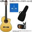 エレクトリック・クラシックギター・セット ARIA(アリア)「A-120F-CWE エレガット:ギターで手頃な4点セット」 【送料無料】【smtb-KD】【RCP】:a120fcwe-4p-p5