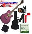 ARIA(アリア) アコースティックギター/7点セット「TG-1 SPP:シースルーパープル+小物6点」 TG1【送料無料】【smtb-KD】【RCP】:-soku-p2