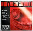 Thomastik INFELD RED バイオリン弦【4/4用】 D線 IR03 コンポジットコア/ハイドロナリウム巻×1本【送料無料】【smtb-KD】【RCP】:-p2