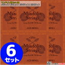 Mandolin Strings マンドリン用 80/20ブロンズワウンド弦。ループエンド仕様。 .010 x 2 / .014 x 2 / .024W x 2 / .034W x 2