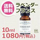 ビオスパ エッセンシャルオイル ラベンダー・フランス 10ml 【送料無料】(精油・アロマオイル)