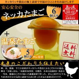 ネッカ卵お試しセット(ネッカ卵Lサイズ6個と温泉たまごMSサイズ5個タレ付セット)【RCP】05P06Aug16