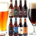クラフトビール 8種8本 飲み比べセット <湘南ゴールド、IPAビール、黒ビール