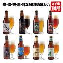 感謝ビール入 クラフトビール 8種8本 飲み比べセット <夏限定 フルーツビール2種、IPAビール、ペールエール、黒ビール入>地ビール 詰..