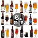 【6本選べる クラフトビール オリジナル 飲み比べセット】アマビエIPA、感謝ビ