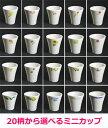 選べる20柄 有田焼 ミニカップ (磁器)有田焼 波佐見焼 生活便利食器